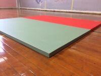 24 x Judo, Martial Arts, Gymnastics, Gym Mats,2mx1mx40mm RRP £2800+