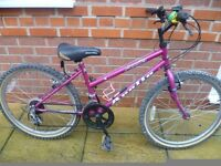 "Apollo Aquila Girls Mountain Bike - 24"" Wheels - 10 Speed"