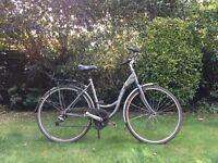 Lady's bicycle, Trek Navigator T30.