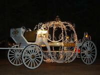 Cinderella, Vis-a-via Horse Carriage Service, Sleigh Rides