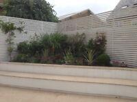 Garden maintenance and tree cutting