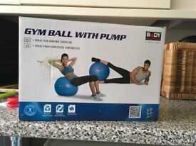 Gyms excercise ball with pump