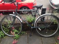 ADULTS COVENTRY EAGLE DISCOVERY HYBRID BIKE + D-Lock for free!