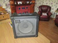 Roland Cube-30 X Amp