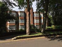 Large 4 bed flat town centre opp Beach Lansdowne university quiet location busses bike park