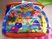Baby einstein playmat/playgym