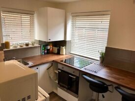 SPACIOUS ONE BED GROUND FLOOR FLAT E14 9YA PART DSS WELCOME
