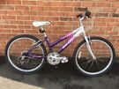 Raleigh girls bike in very good condition