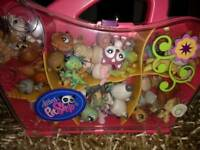 Littlest Pet Shop Big Bundle