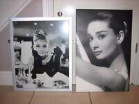Audrey Hepburn pictures