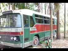 1980 Leyland Other Other Peregian Beach Noosa Area Preview