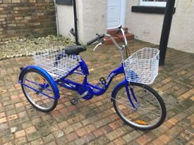 TRIKE BIKE (adults tricycle)