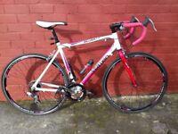 Road Race Bike,unisex,14 speed,