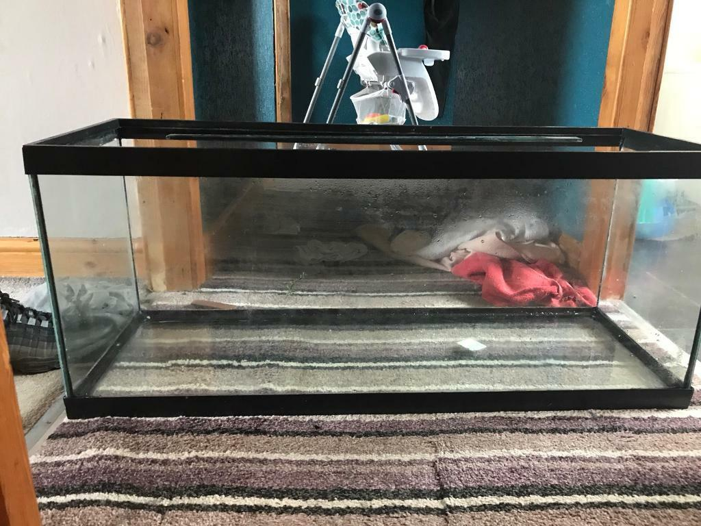 3 fish tanks for swap or sale
