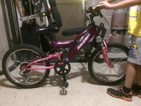 Kids Raleigh mountain bike
