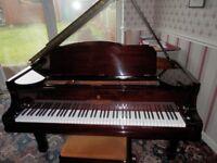 New York Grand Piano 1913
