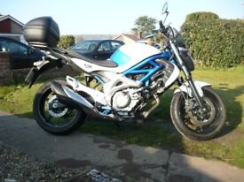 Suzuki Gladius in lovely condition with low milage