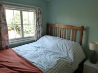 Lovely old oak frame double bed and good quality pocket sprung mattress