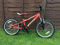 Dawes red tail bike