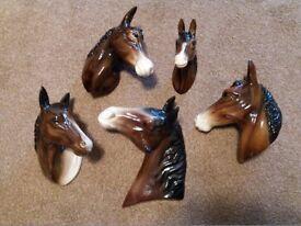 5 Horse Head Plaques