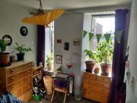 Room Available in Homely Flat Share; 12th June - 12th August; £275pm