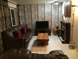 Large Single Room in furnace Green