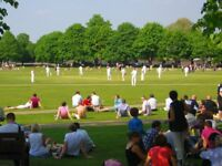 Cricket team looking for players