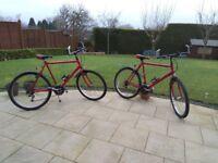 Two Raleigh Max Mountain Bike