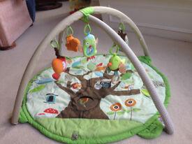 Skip Hop Treetop & Friends Activity Gym Colour Green