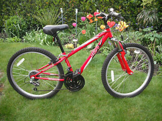 "Boys / Girls Apollo XC24 Mountain Bike - 12"" Frame - 24"" Wheels"