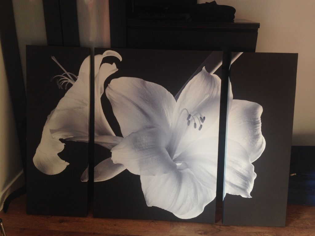 Large black and white 3 piece lily flower canvas in grangemouth large black and white 3 piece lily flower canvas izmirmasajfo