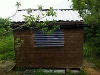 Garden shed 8x6 Tonge and groove