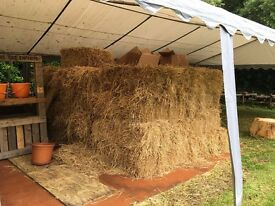 Good Quality Straw Bales, Dry Stored