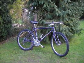 diamondback topanga,21 speed,18 in frame,recent tyres,runs superbly