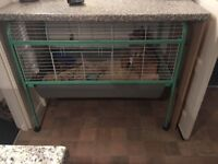 Dwarf rabbit and cage for sale £50ono