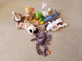 "soft toys ""ty"" beanie babies bundle"