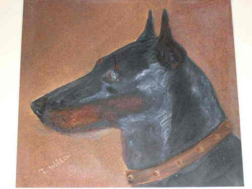 SUPERB RARE ANTIQUE MANCHESTER TOY TERRIER DOG OIL PAINTING 1890 BY J WILSON