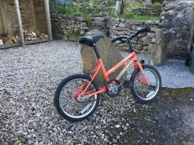 Orange Junior Children's Child Push Bike Bicycle - Single Gear