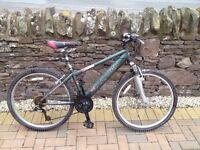 """18"""" Saracen Fire mountain bike for sale"""