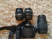Canon EOS 60D plus Sigma 70-300mm lens, Macro 60mm lens, EF-S 18-55mm lens and camera bag