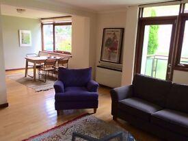 Mid Century Modern Living in leafy Bruntsfield