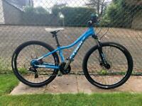 Trek Skye Mountain Bike