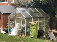 8' x 6' Greenhouse Free buyer to dismantle and take away