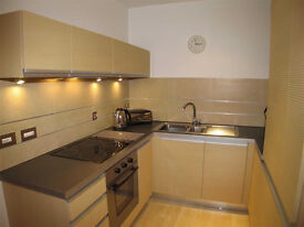 Spacious 1 bedroom flat in Kindbrooke dss accepted with guarantor
