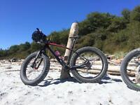 Borealis Yampa fat bike