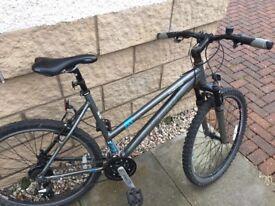 *SOLD* Raleigh Freeride AT20 Ladies Mountain Bike