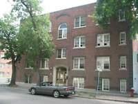 221 Colony St.  -  1 BR
