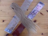 Sleek Luxury Clip In 100% Human Hair Extensions 18 inches