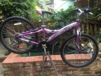 Teenagers giant mountain bike