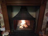 Multi fuel /log burner